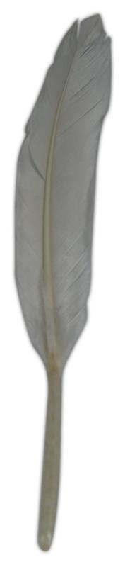 FEATHER 130x20mm